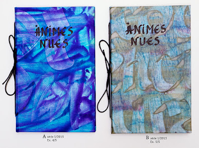 llibre artesà Ànimes nues