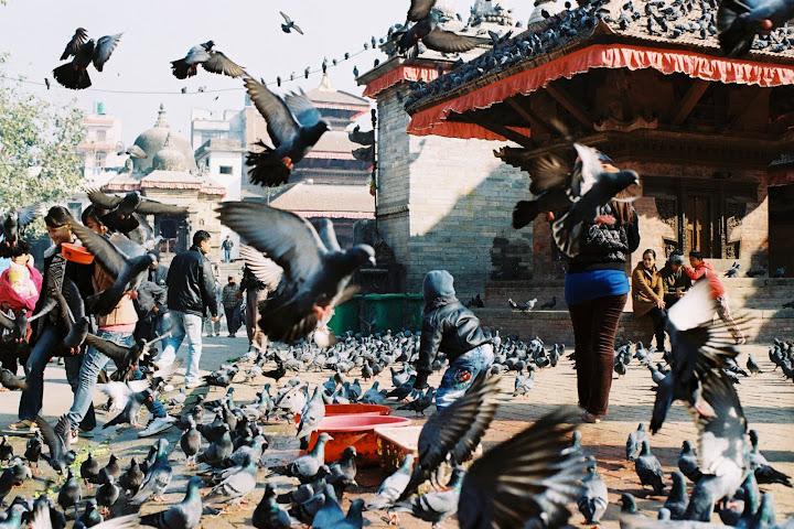 聖母腳下~尼泊爾~~ (圖多)