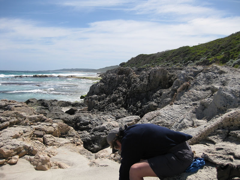 Limestone formations - Augusta Cliffs - Cape to Cape Track