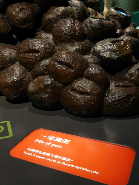 """Pile of Poo"" with sign saying ""Touch 3 weeks worth of Europlocephalus poo."