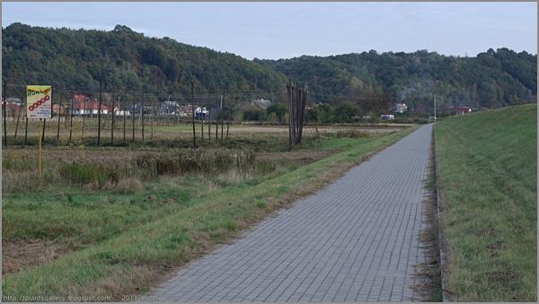Ścieżka rowerowa Puławy - Kazimierz
