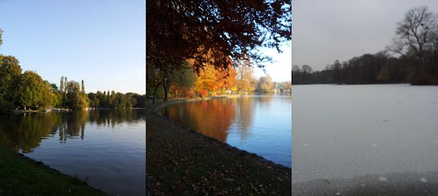 Schwabinger See im Wandel der Jahreszeiten
