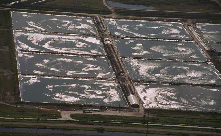 Do your homework better and faster for Fish farms in florida