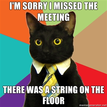 Business Cat overload