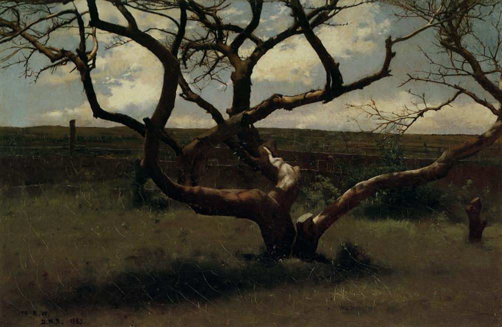 Dennis Miller Bunker - Tree