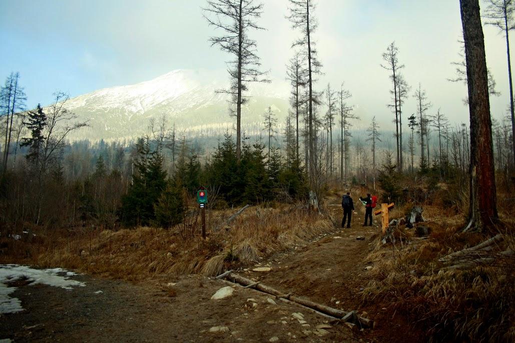 Sławkowski Szczyt szlak ze Starego Smokowca