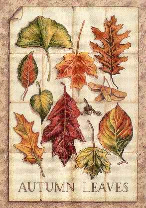 Leaves of Autumn cross stitch patterncross stitch pattern