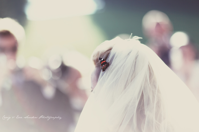 Butterfly bride by Craig and Eva Sanders Fine Art Photography