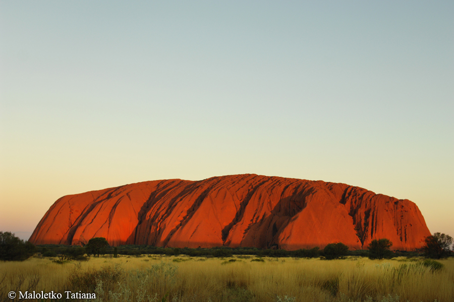 Австралия 2012 из элис спрингс в улуру