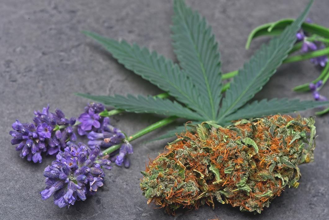 wiet ruikt naar lavendel