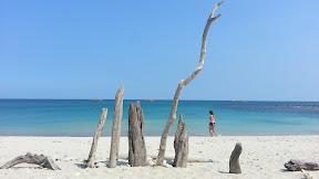 Bodur Beach