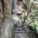 Track between Gorden Falls Reserve and Pool of Siloam (186069)