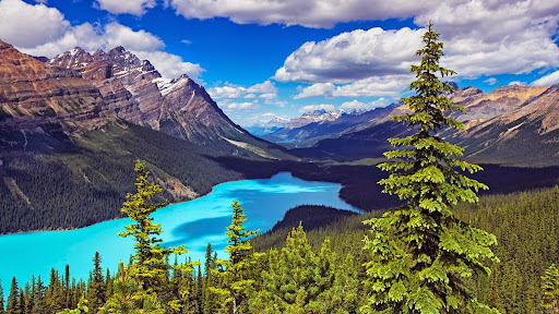 Peyto Lake, Mount Patterson, Banff National Park, Alberta, Canada.jpg