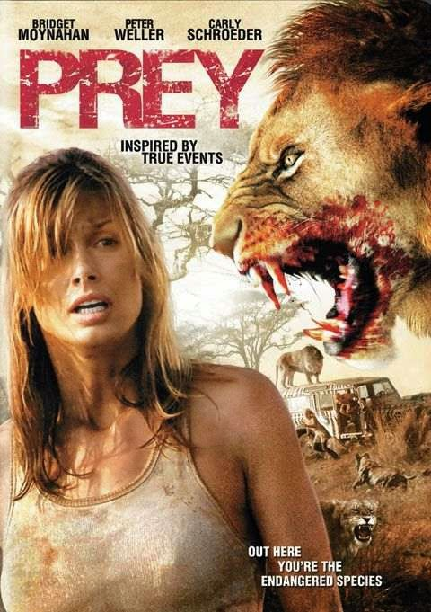 Poster Of Prey (2007) Full Movie Hindi Dubbed Free Download Watch Online At alldownloads4u.com