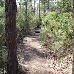 Track between Girrakool Picnic Area and Illoura lookout (180018)
