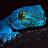 bre39y avatar image