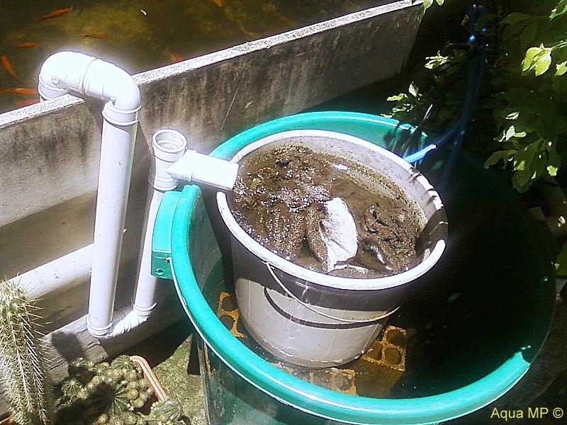 Caixa-Lago 1.000L + Filtro Balde 100L = Água Cristalina Foto-0055%2520%25282%2529