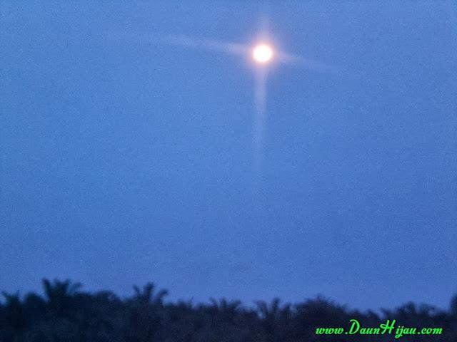 Daun Hijau dan Malam (4)
