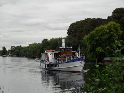 Темза в доль берега