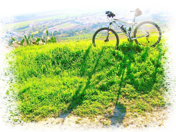 Rutas en bici. - Página 21 Jabugo%2B002