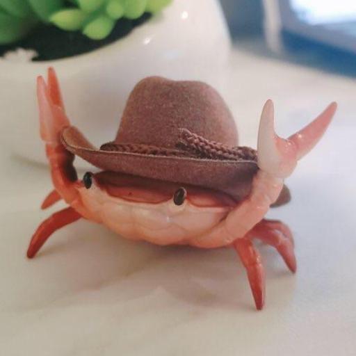David Eduardo Cortelezzi