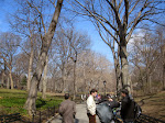 Central Park - what a great place to walk around
