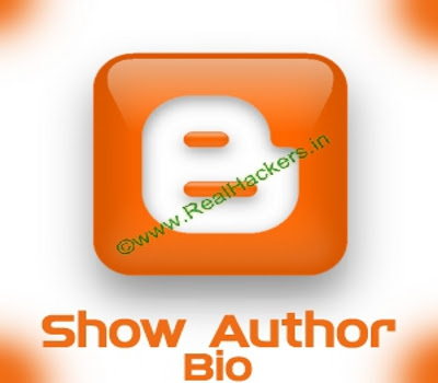 Show Author's Short Bio After Post In Blogger