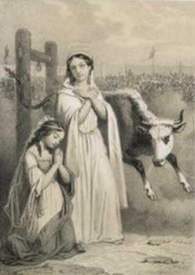 Resultado de imagem para Santa Perpétua