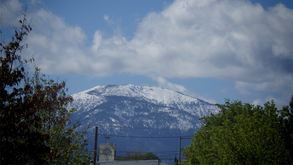 Shasta Bolly w snow.jpg