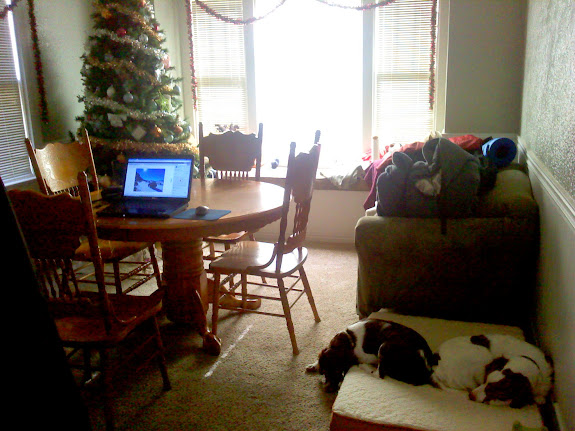 Working on a trip report while the puppies sleep in front of the furnace vent
