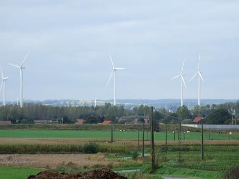 Parc Eolien Leuze-en-Hainaut & Beloeil DSCF9407.JPG
