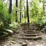 Steps near Lorna Pass (394808)