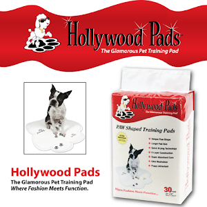 Who is Hollywood Pads?