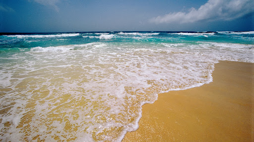 Sal Island, Cape Verde Archipelago, Africa.jpg