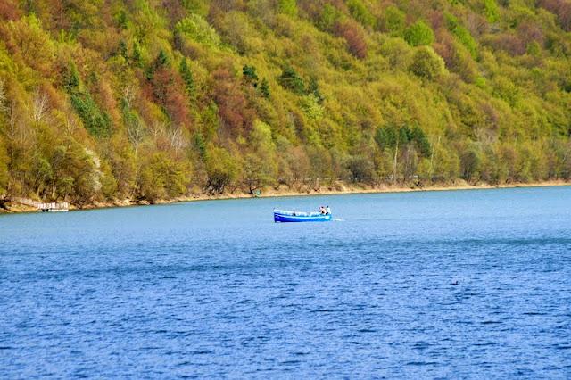 Jezioro Myczkowieckie, Myczkowce, Koziniec