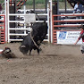 CalgaryandBC050.jpg