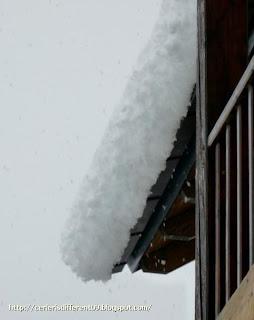 P1200128 - Nevando el sábado, paraiso el domingo.
