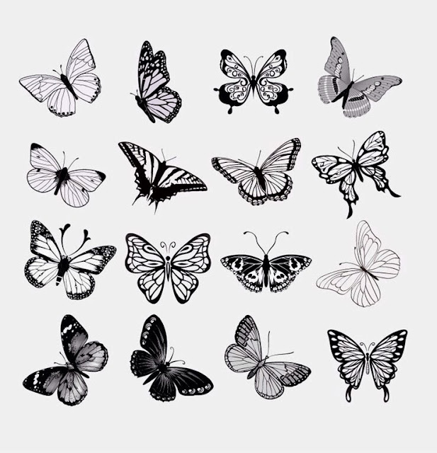 Take A Six Inch By Piece Of Drawing Paper And Fold It In Half Draw Butterfly Against The Using Worksheet Videos Below As