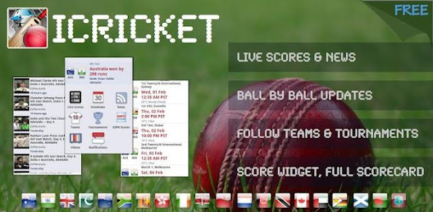 Cricket Scores - TCS