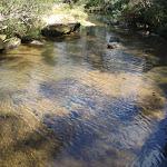pool on Piles Creek (179958)