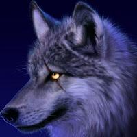 Tiana Lynch's avatar