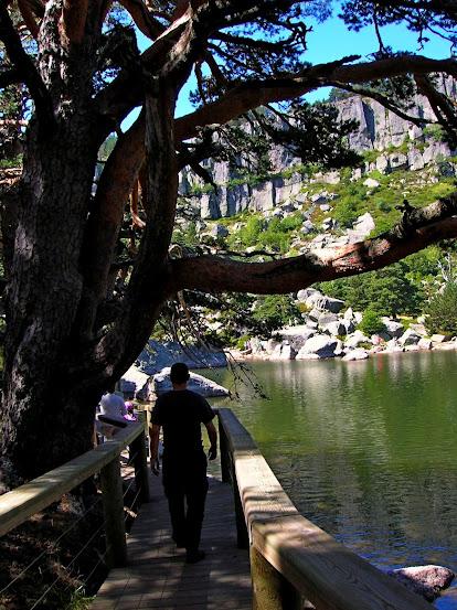Un paseo por las nubes de Los Pirineos.. Los%2BPirineos%2B2014%2B050