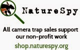 Nature Spy - Ltl Acorn dealer in the United Kingdom