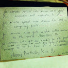 Birthday Greeting for Kimmy!.jpg