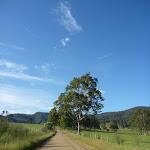 Walking along the Congewai Valley Rd (366218)