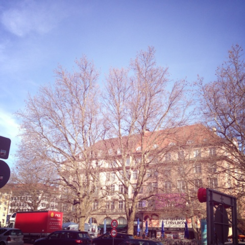 Es frühlingt am Sendlinger Tor