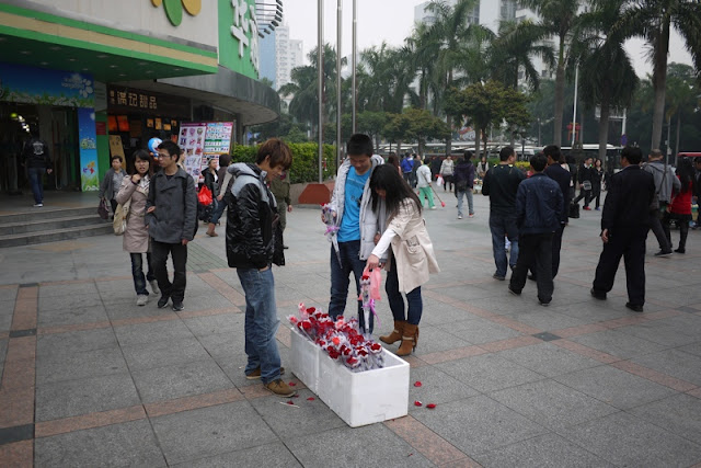 Valentine's Day rose for sale in Zhuhai, Guangdong