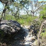 Rock track north of Scopas Peak (374815)