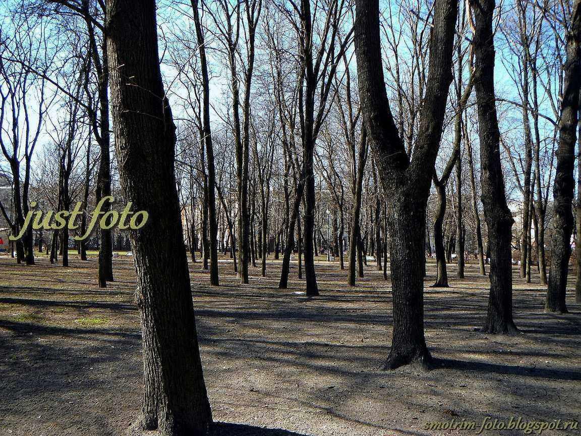 Нарвская застава - парк 9 января весной фото