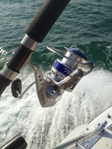 Rock solid fishing holy snikees cobia wins for Rock solid fishing